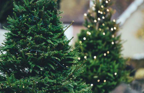 Strom sparen – ein Geschenk für die Umwelt