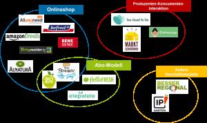 Diese 15 Plattformen haben die Wissenschaftlerinnen vom Öko-Institut analysiert und nach Geschäftsmodellen sortiert. Quelle: Öko-Institut