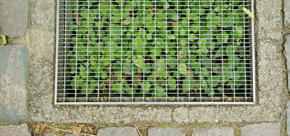 Wenn wir die Böden nicht schützen, zerstören wir uns selbst. Quelle: Plainpicture/Öko-Institut