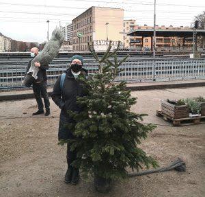 Emily Castro with a german Weihnachtsbaum, Quelle: privat